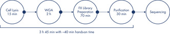 QIAseq FX Single Cell DNA workflow