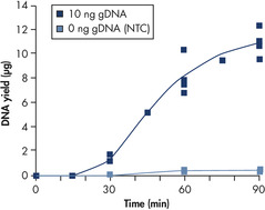 Consistent and high yields of amplified DNA.