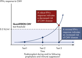 A theoretical model of QuantiFERON-CMV responses.