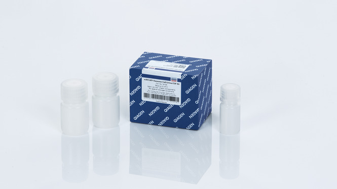 miRCURY Exosome Cell/Urine/CSF Kit