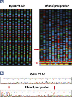 Superior sequencing results.