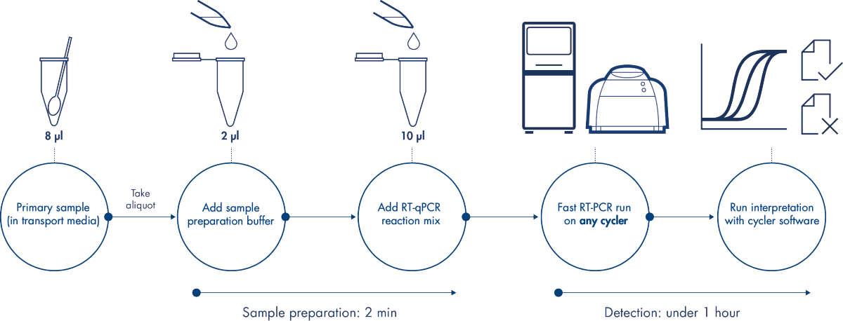 An innovative 3-step liquid-based workflow