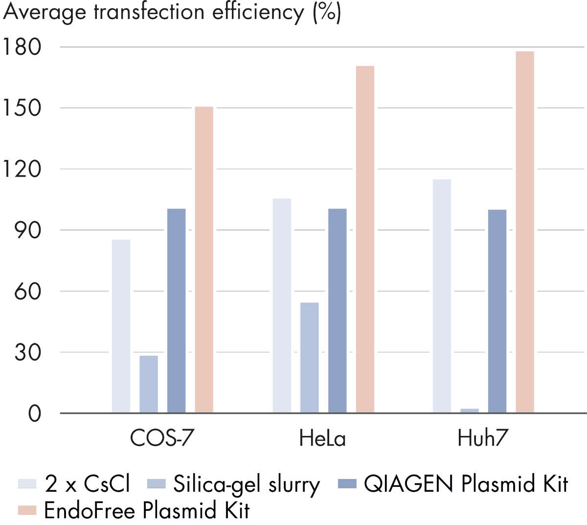 Plasmid purification method versus transfection efficiency.