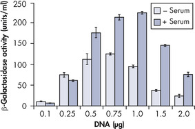 Serum and DNA quantity vs. transfection efficiency.