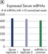 Robust detection of miRNA