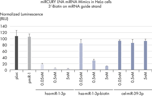 Silencing of miRNA reporter assays with biotinylated miRCURY LNA miRNA Mimics.
