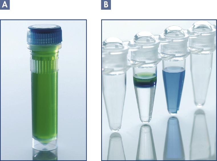 Unique DNA Protect Buffer and pH indicator system.