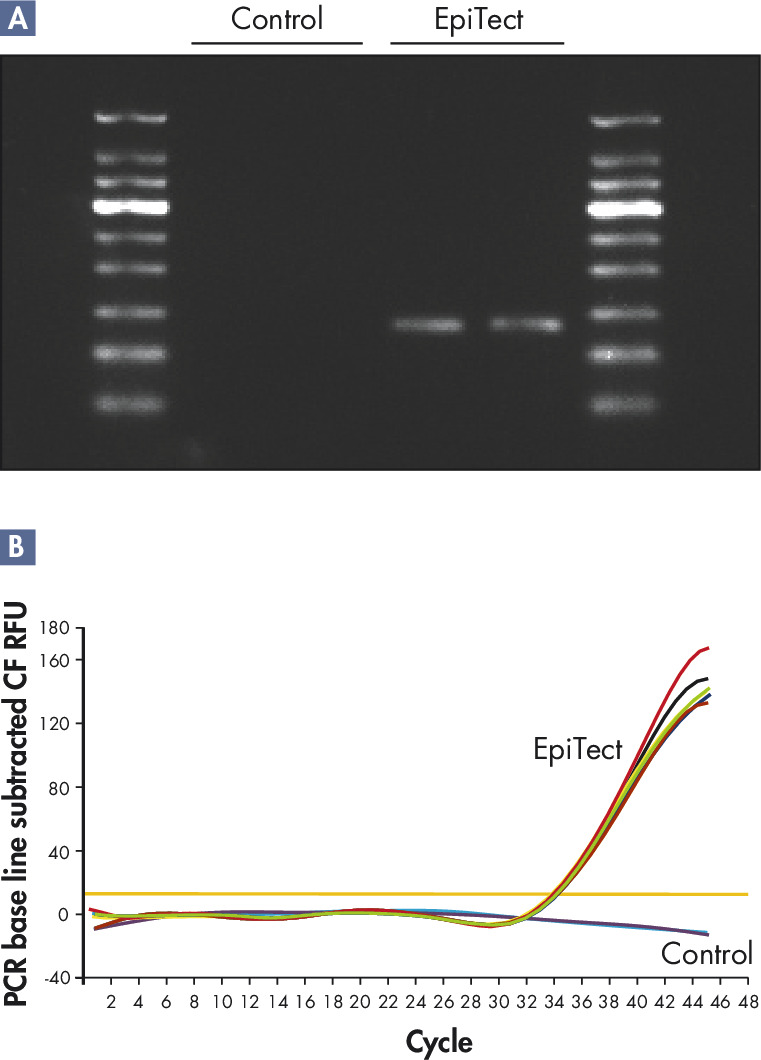 Methylation detection from FFPE tissue samples.