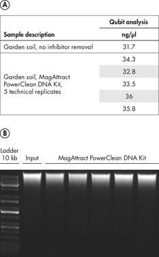 Figure 2. High DNA recovery from input material with the MagAttract PowerClean DNA Kit.