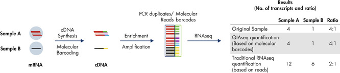 Digital sequencing (molecular barcodes) principle.