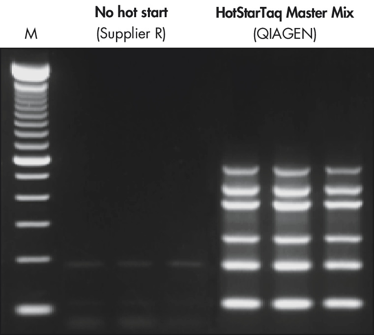 Specific amplification in multiplex PCR.