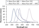 Normalized fluorescence emission spectra of Alexa Fluor dyes and R-PE