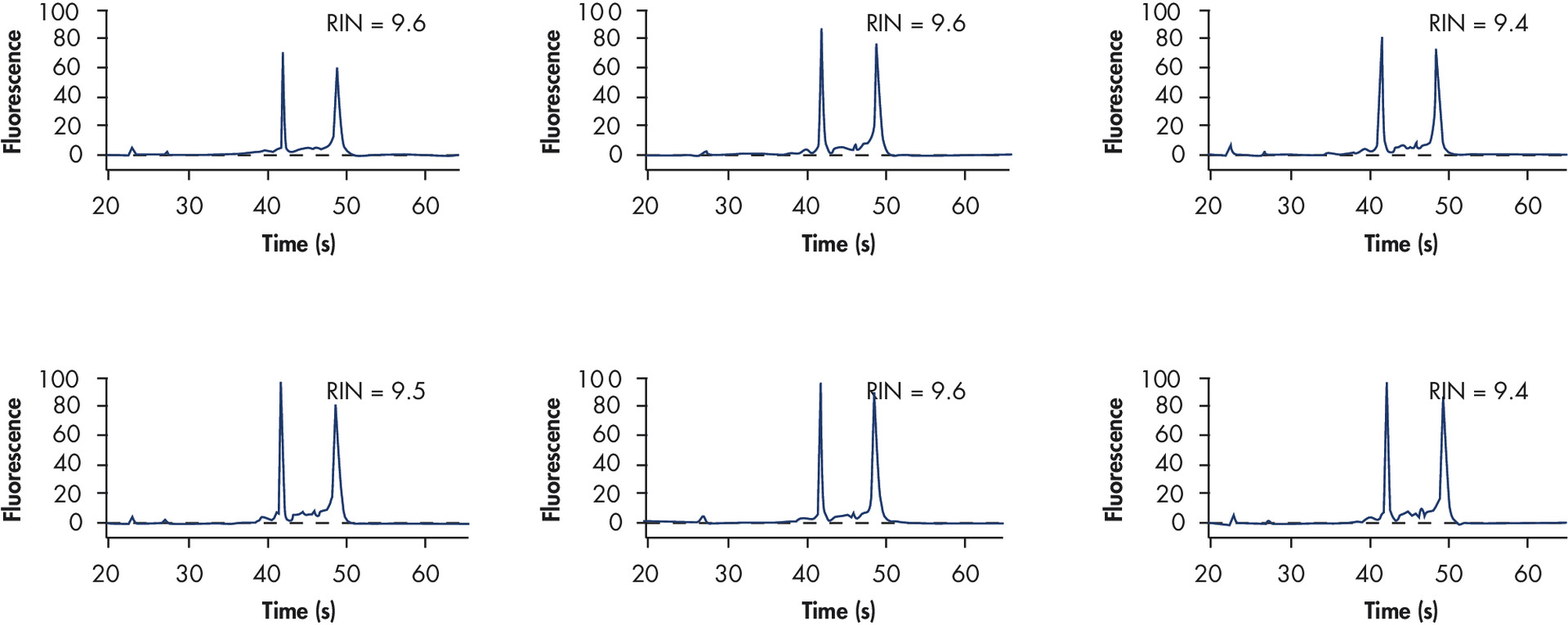 RNA stabilized at 2–8°C.