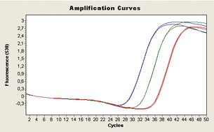 Successful quantitative triplex qPCR of low and high abundance targets.