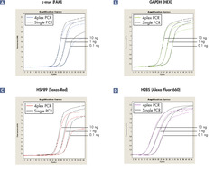 Comparable amplification in 4-plex PCR and singleplex PCRs.