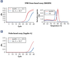 Superior sensitivity in real-time RT-PCR.