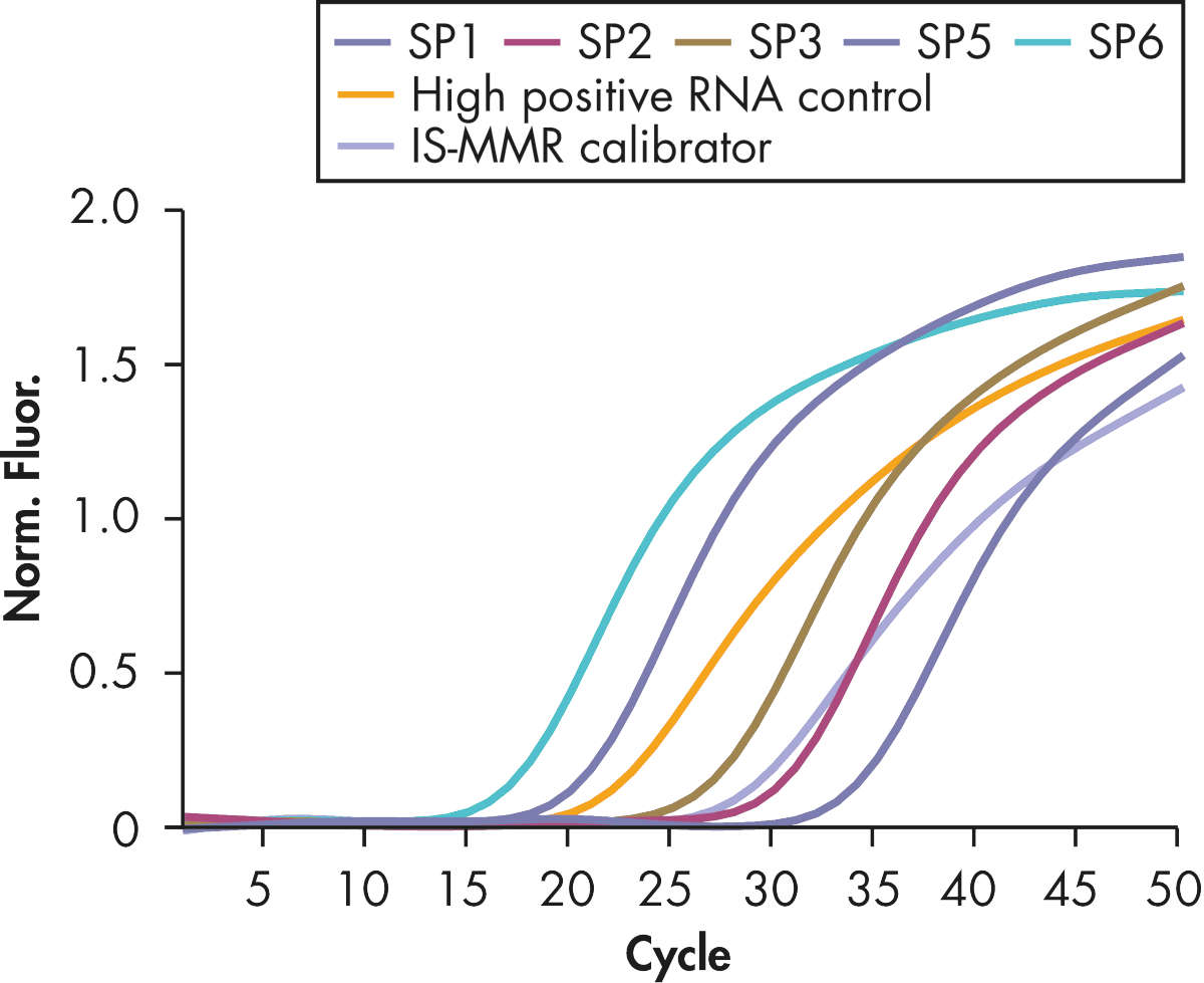Accurate detection of Mbcr plasmid standards, high positive RNA control, and IS-MMR calibrator.