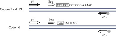 Illustration of the NRAS assay.