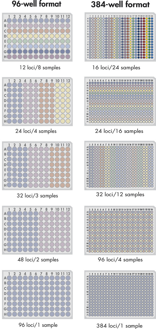 EpiTect ChIP Custom qPCR Array formats.