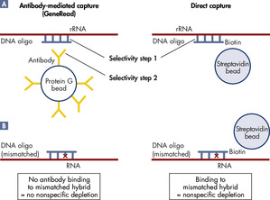 <p>GeneRead combines two steps of specificity: DNA/RNA sequence specificity and antibody binding.</p>