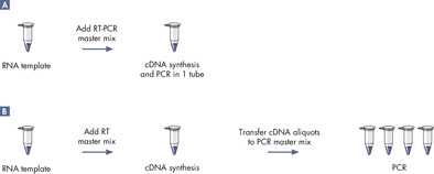 Comparison of two-step and one-step RT-PCR