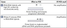Effects of complex secondary structure on RT-PCR: PCR effects