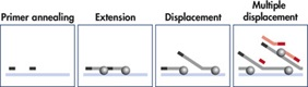 Schematic representation of whole transcriptome amplification
