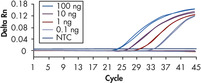Sensitivity in real-time RT-PCR