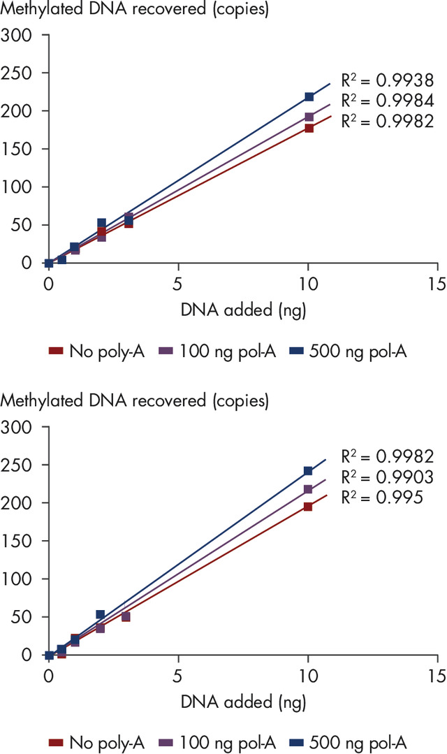 Efficient recovery of methylated DNA.