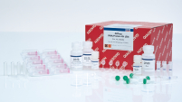/fi/products//discovery-and-translational-research/dna-rna-purification/multianalyte-and-virus/allprep-rnaprotein-kit/