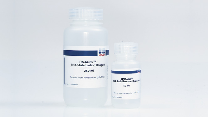 /de/shop//sample-technologies/rna/rnalater-rna-stabilization-reagent/