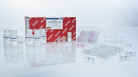 AllPrep DNA RNA Mini Kit