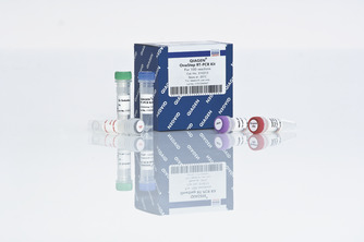 /qiagenstorefront/de//pcr/end-point-pcr-enzymes-and-kits/qiagen-onestep-rt-pcr-kit/