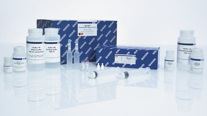 /qiagenstorefront/ch//sample-technologies/dna/qiagen-plasmid-plus-kits/