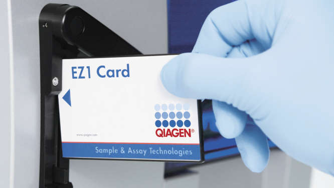 /qiagenstorefront/ca//automated-solutions/accessories/ez1-dna-blood-card/