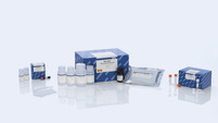 /no/shop//protein-and-cell-assays/multi-analyte-elisarray-kits/