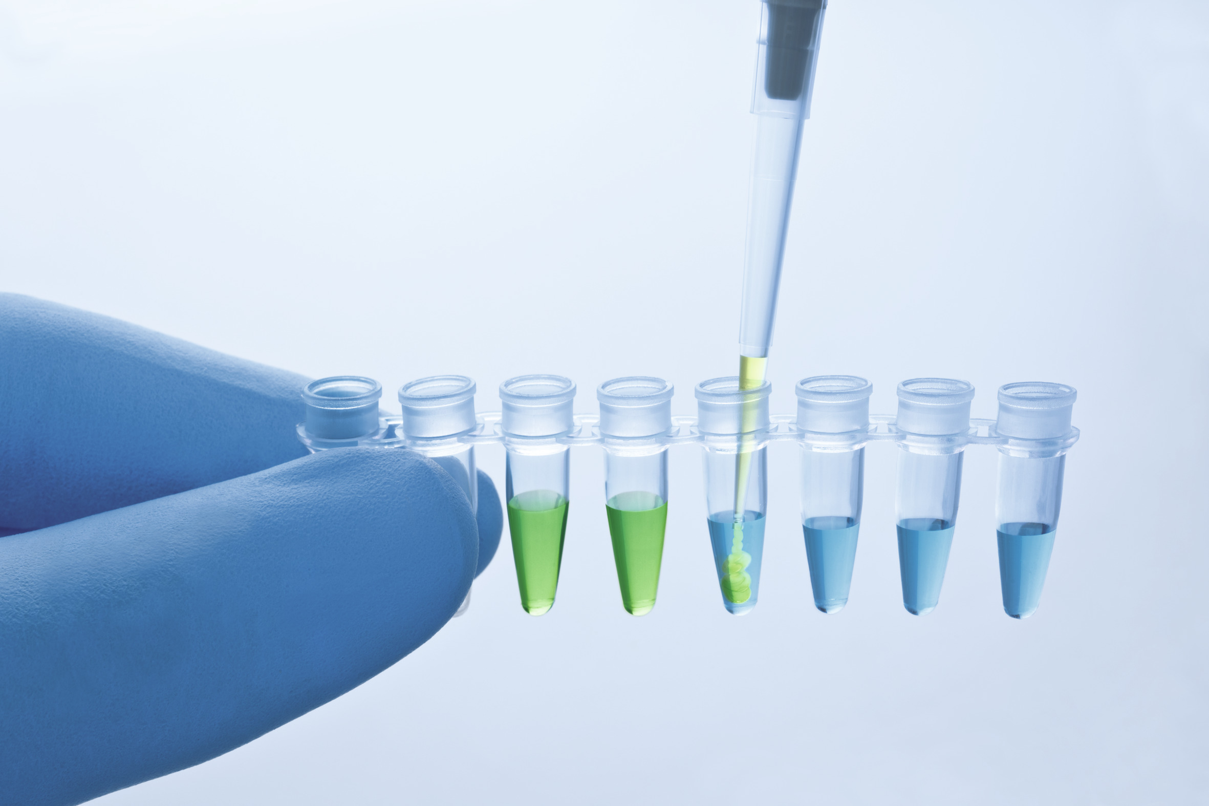 Accurate reaction setup indicated by the built-in pipetting control.