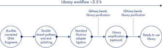 The QIAseq Methyl Library Kit workflow.